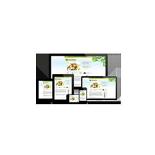 multimedia solution